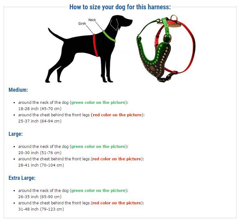 Measurement Dog Harness Chart H1